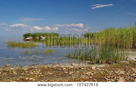 reed islands and boats on Peipsi lake, Estonia poster