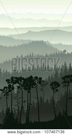 Vertical Illustration Of Misty Forest Hills.
