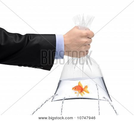 Hand Holding A Golden Fish In A Bag With Holes