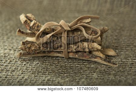 Calamus Root Or Sweet Flag