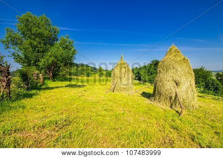 Haystacks And A Tree On A Meadow Ona  Hill