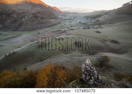 Romanian Mountain Meadoiw