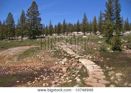 Trail through Soda Springs, Yosemite