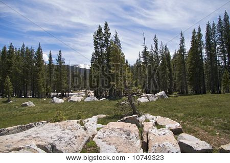 Alpine landscape, Yosemite