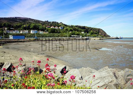 Fishguard Bay, Pembrokeshire, Wales, UK, a popular Welsh coastline for tourist visitors poster