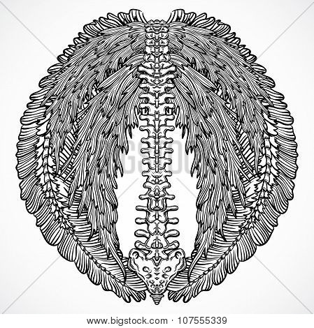 Tattoo design with backbone and ornate floral wings. Vintage highly detailed hand drawn illustration