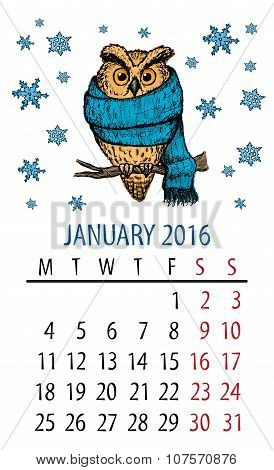 January owl calendar. Cartoon colorful owl and snowflakes on white background. New year month. poster