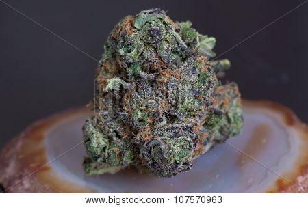 Grape Ape Medicinal Medical Marijuana