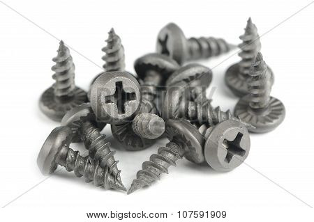 Drywall (Plasterboard) Screws Isolated On White Background
