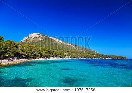 Beautiful Beach Cala Pi De La Posada