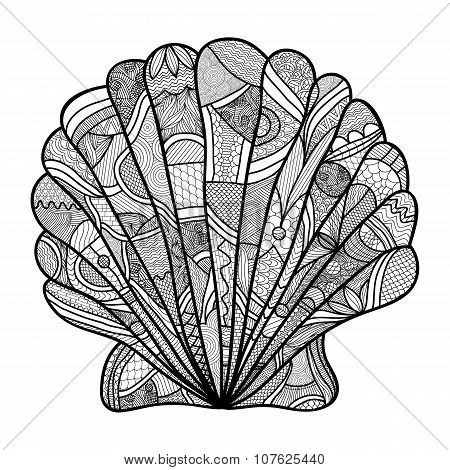 Seashell. Hand drawn shell - anti stress coloring page for adult with high details isolated on white