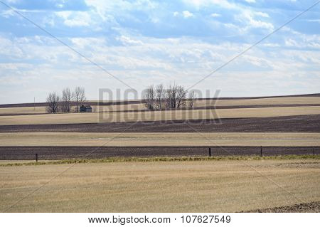 Outdated Barn And Fields