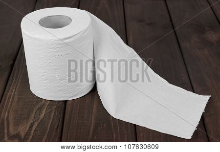 Toilet Roll Photo