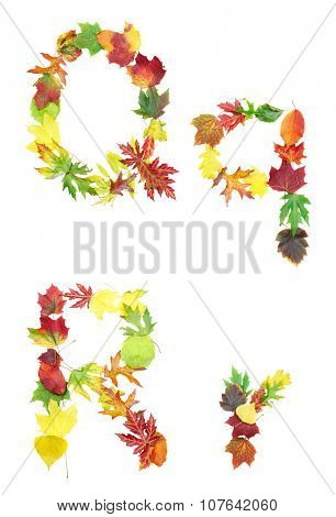 Font made of autumn leaves isolated on white. Letters q and r.