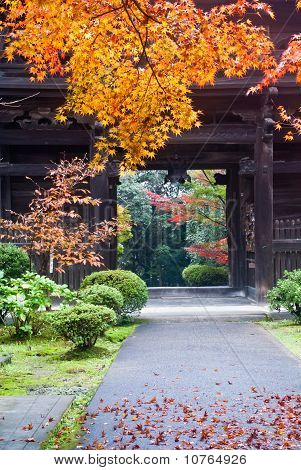 Exit To A Japanese Temple Showing Colorful Fall Foliage
