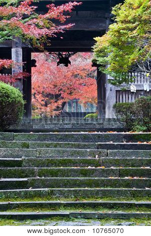 Entrance To A Temple In Japan Showing Fall Foliage