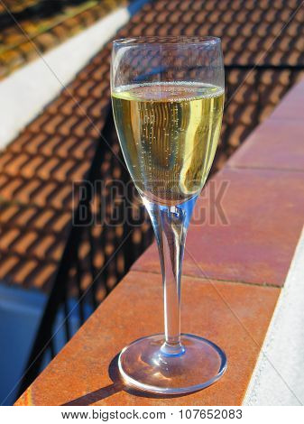 Champagne Glass In Sunshine