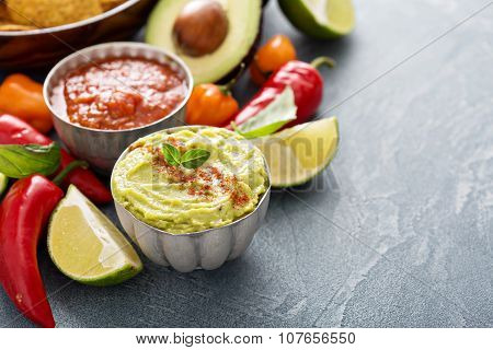 Mexican cuisine ingredients and guacamole