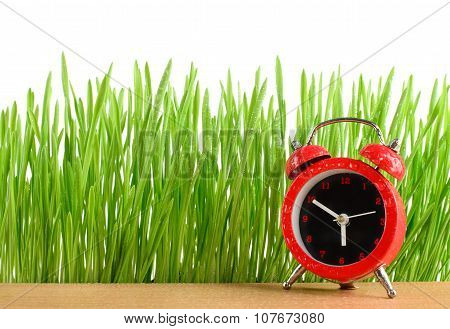 Little Red Alarm Clock On Desk And Wet Green Grass Isolated