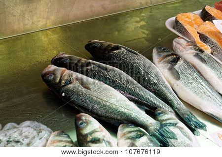 Fresh Sea Bass, salmon of Mediterranean cooking