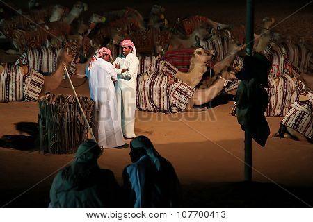 Arab Camel Handlers