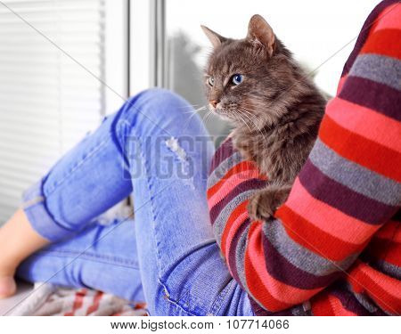 Woman in colourful pullover holds in hands beautiful grey cat near window poster