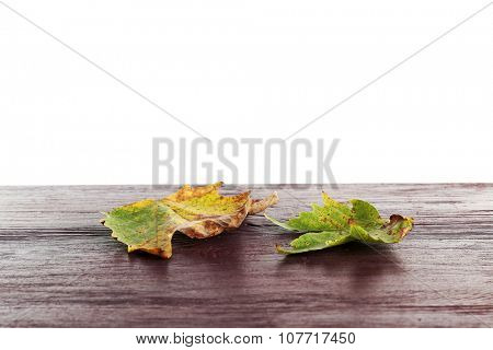 Autumn maple leaves on a wooden table isolated on white
