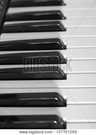 Keyboard Electronic Instrument