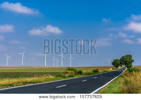 Landscape Of Wind Turbines And An Asphalt Road Stretching Into The Distance. Bright Picture Of  Wind