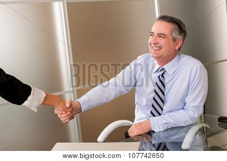 Mature happy smiling business man shaking hands