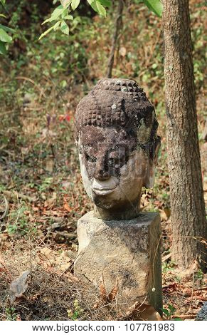The Heads Of Abandoned Old Buddha Statue