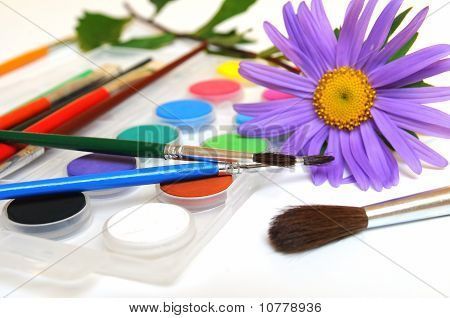 Purple Daisy and Paintbox