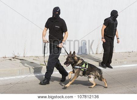 Customs Drugs Detection Dog