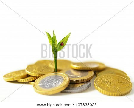 New Euro Growth