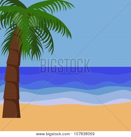 Palm Trees Tropical Background