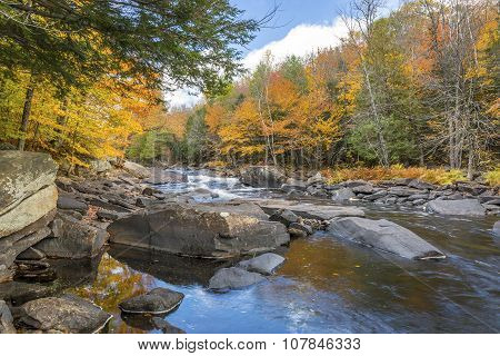 River Flowing Through A Forest In Autumn - Ontario, Canada