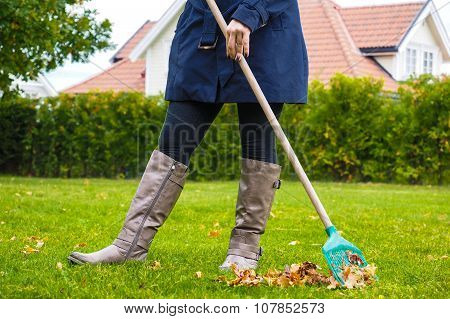 Female person raking green grass from brown leaves at autumn in tall grey boots poster