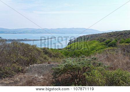 Bodega Bay And Doran Beach