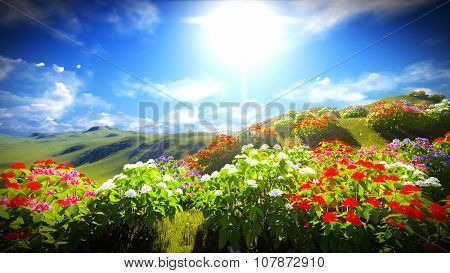 Beautiful landscape with blooming flowers