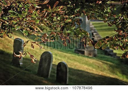Gritty Graveyard