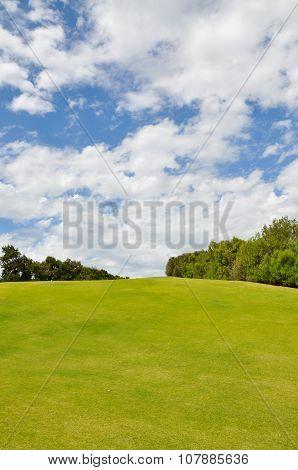 Hilltop Landscape