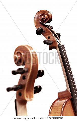 violins on white