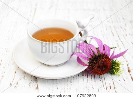 Cup Of Tea  With Purple Echinacea