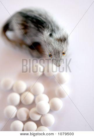 """"""" pills many pills! medicine drug """" poster"""