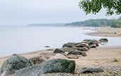 Rocky beach on the Gulf of Finland. Sillamae Estonia poster