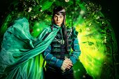 Noble fairy elf in the magic forest. Fantasy. Fairy tale, magic. poster