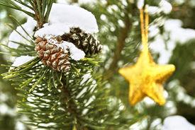 Golden Star On Christmas Tree