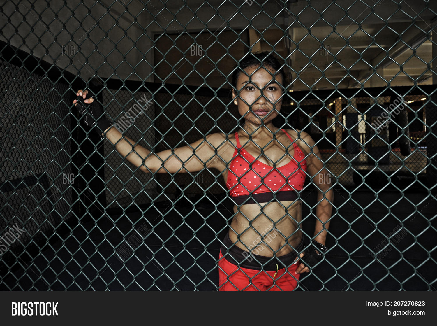 young beautiful and sexy Asian fighter woman in fighting gloves and sport  clothes inside MMA cage
