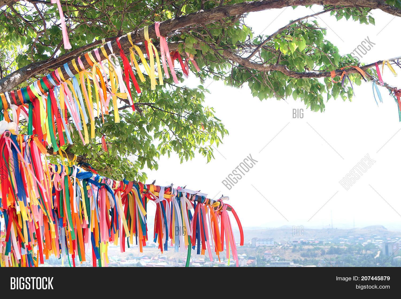 Wish Tree Color Image & Photo (Free Trial) | Bigstock