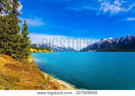 Rocky Mountains of Canada in Indian summer. Sunny cloudless day in October. Stunning turquoise Abraham Lake in a flood. The concept of ecological and active tourism